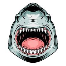 Colorful Aggressive Shark Head...