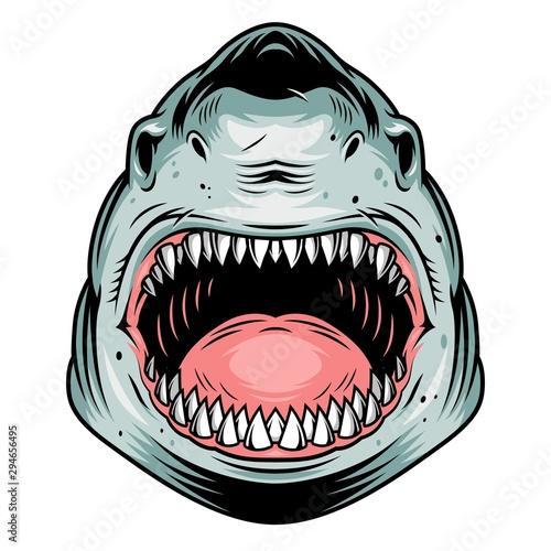Colorful aggressive shark head concept Poster Mural XXL