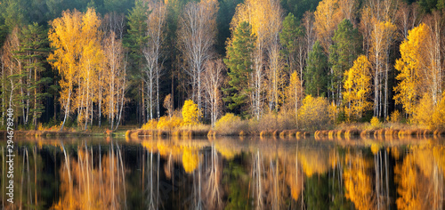 Poster Rivière de la forêt panorama of autumn forest on the river Bank in the Urals, Russia, October
