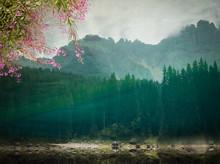 Carezza Lake Reflections.