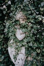 Stone Statue Of Woman Hidden I...