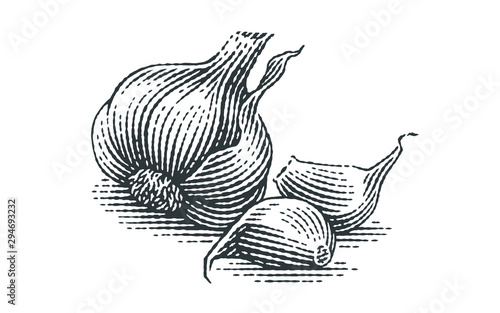 Garlic composition. Hand drawn engraving style illustrations. Canvas Print