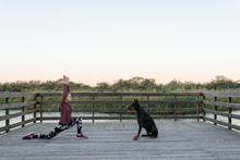 Girl Doing Yoga With Dog On Pier