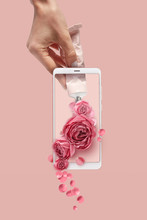Woman's Hand With Tube Of Paint Draw Fresh Flowers On A Phone Sc