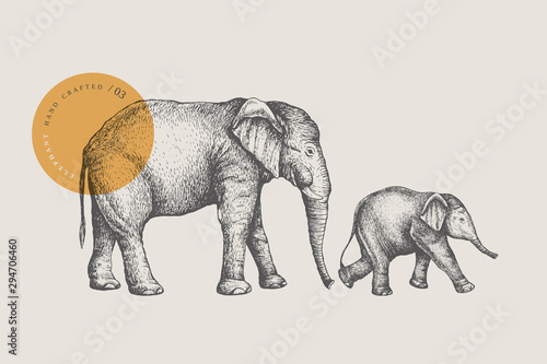 Photo Big African elephant and small baby elephant, drawn by graphic lines on a light background