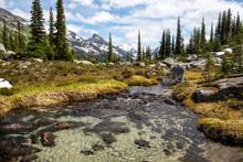 A Creek Runs Through An Alpine...