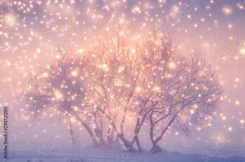 Montage in der Fensternische Rosa hell Magic fairy Christmas evening