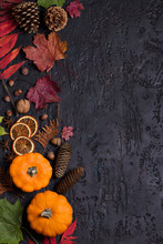 Autumn Leaves, Pumpkin, Pine C...