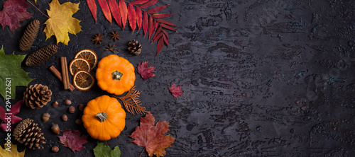 Fototapeta  Autumn leaves, pumpkin, pine cones and nuts on black background with copy space