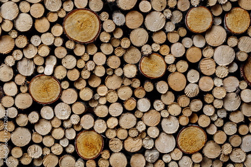Fotobehang Brandhout textuur Round firewood texture. Pile of wood logs ready for winter.