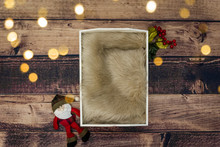 Newborn Backdrops 10