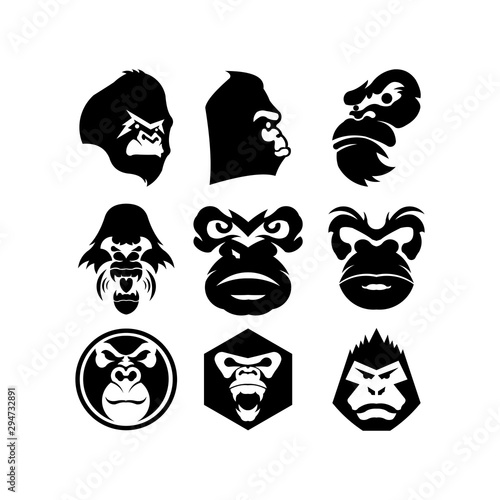 Gorilla head vector, monkey head vector, ape face logo Canvas Print