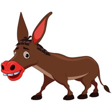 Donkey With Long Ears - Cartoon Vector Image