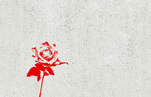 Single Red Rose Made In Graffiti Style With Stencil Effect Painted On White Washed Concrete Textured Wall. Landscape Format With Blank Copy Space.