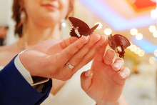 Exotic Butterfly. Beautiful Live Butterflies Sit On The Hands Of The Bride And Groom. Received As A Gift At The Wedding Banquet