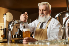 Elderly Barman At Bar Counter Pouring Light Beer.