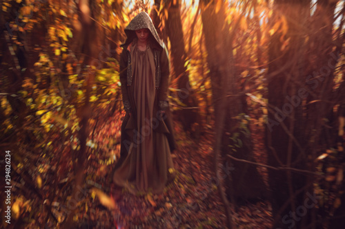 Fotografie, Obraz  Enchantress in the autumn deciduous forest at sunset.