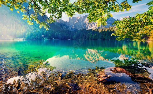 Poster Trees Impressive morning view of Fusine lake. Fantastic summer sunrise in Julian Alps with Mangart peak on background, Province of Udine, Italy, Europe. Traveling concept background.