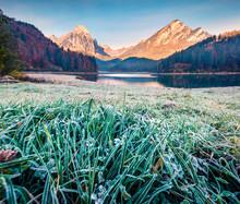 Frosty Morning Scene Of Oberse...