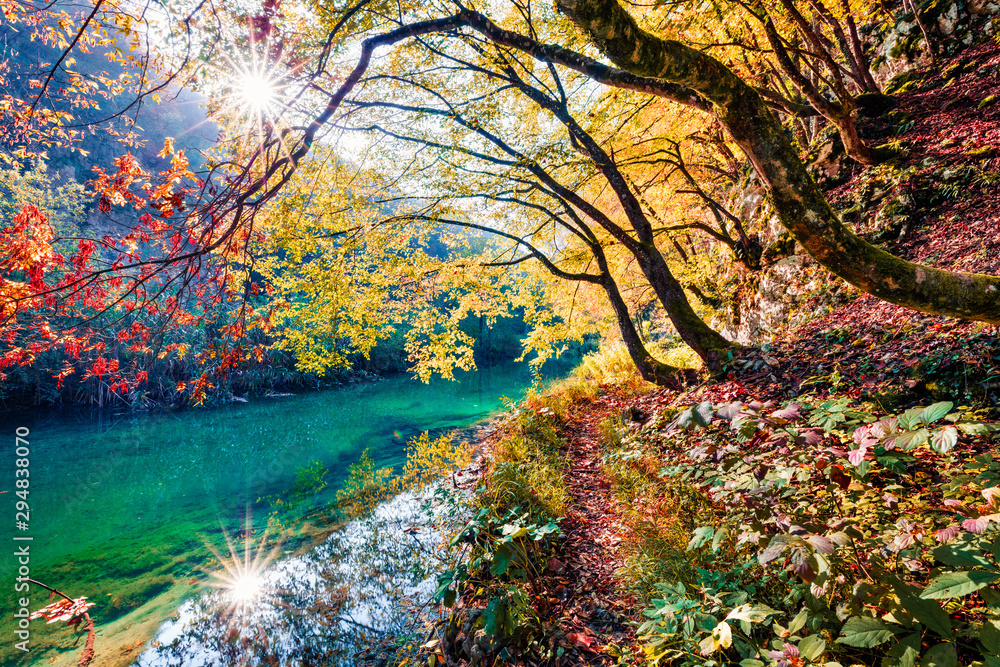 Fototapety, obrazy: Sunny morning view of pure water river in Plitvice National Park. Amazing autumn scene of Croatia, Europe. Abandoned places of Plitvice lakes series. Beauty of nature concept background.