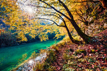 Obraz na Szkle Rzeki i Jeziora Sunny morning view of pure water river in Plitvice National Park. Splendid autumn scene of Croatia, Europe. Abandoned places of Plitvice lakes series. Beauty of nature concept background.