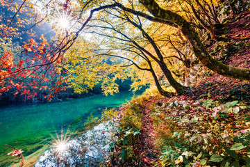 Panel Szklany Natura Sunny morning view of pure water river in Plitvice National Park. Amazing autumn scene of Croatia, Europe. Abandoned places of Plitvice lakes series. Beauty of nature concept background.
