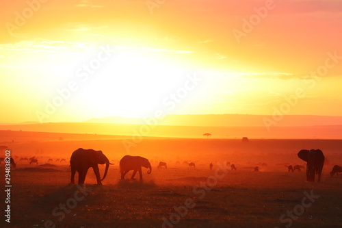 Poster Jaune Silhouettes of african animals in the savannah during sunset.