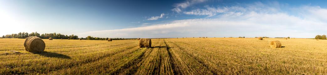 Haystacks na polu w jesieni przyprawiają z chmurnym niebem.