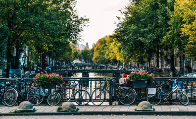 Canals of the Amsterdam city