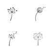 Dandelion vector icon design