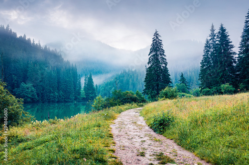 Fototapety, obrazy: Nice morning scene of Lacu Rosu lake. Foggy summer sunrise in Harghita County, Romania, Europe. Beauty of nature concept background.