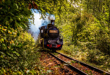 Vintage Old Steam Train In The Forest - Slow Travel