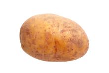 Unwashed Potato Isolated On Wh...