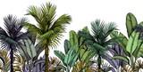 Bezszwowa granica z zielonymi tropikalnymi drzewkami palmowymi na białym tle. Ręcznie rysowane ilustracji wektorowych. - 294866439