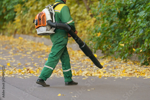 Cleaning falling leaves on a city street in the autumn dry time Wallpaper Mural
