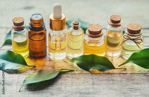 Fototapeta Tea tree essential oil in a small bottle. Selective focus. obraz