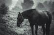 Pferd im Regen