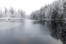 Ice On Lake By Snow Covered Tr...
