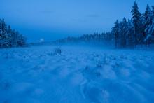 Mounds In Snow In The Stora Bo...