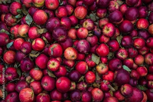 Fotografía  apples
