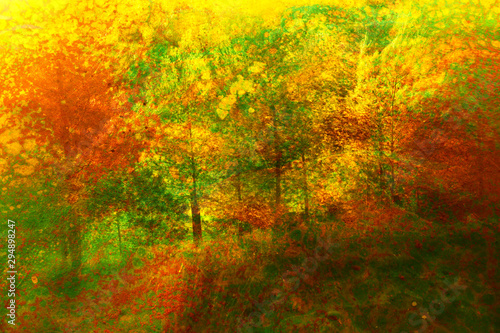 Fotobehang Oranje art concept of double exposure in nature. forest and fall colors