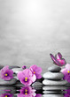 Beautiful flower, butterfly and stone zen spa on grey background.