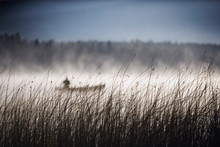 Man In A Canoe On Foggy Lake