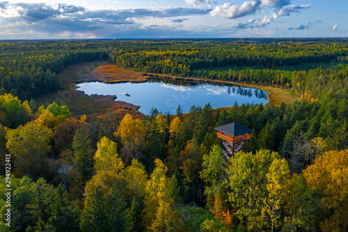 fototapeta na ścianę Latvian autumn nature. View from the top. Kangari lake in forest.