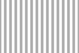 Vector seamless vertical stripes pattern, gray and white. Simple background - 294937873