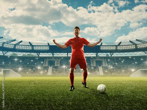 Soccer player celebrates goal Fototapet