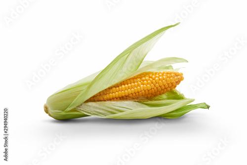 Carta da parati Golden ripe open corn on the cob, corncob, isolated against a white background