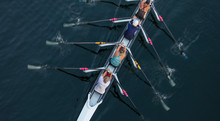 Female Crew Racers Rowing, Hig...