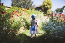 Toddler Girl Playing In  Summer   Garden