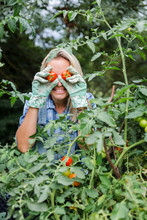 Blond Smiling Woman Harvesting Tomatoes, Tomatoes On Eyes